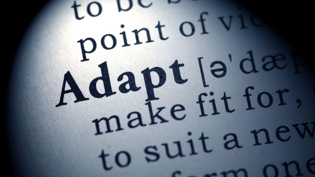 Adaptation en entreprise